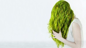how-do-you-get-rid-of-green-hair-from-the-pool_fa1ca827-3e96-4b75-ba77-ff98e75de083